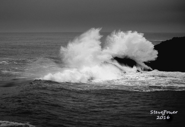 Can you see the whale looking at the wave next to him? Steve Power photo