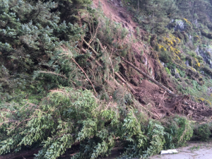 landslide heceta head odot photos