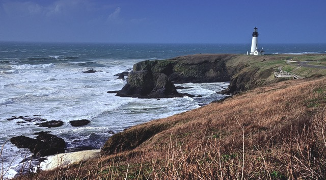 The grand lady on Yaquina Head, standing just as straight and tall in gale force winds as she does on a breathless summer day. Steve Power photo