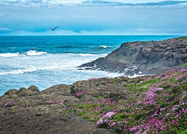 Summery looking day off Depoe Bay Donna Plummer
