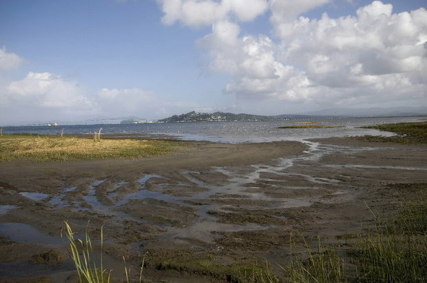 Site for proposed LNG export plant near Astoria.  Company pulls out.  State said wasn't needed.