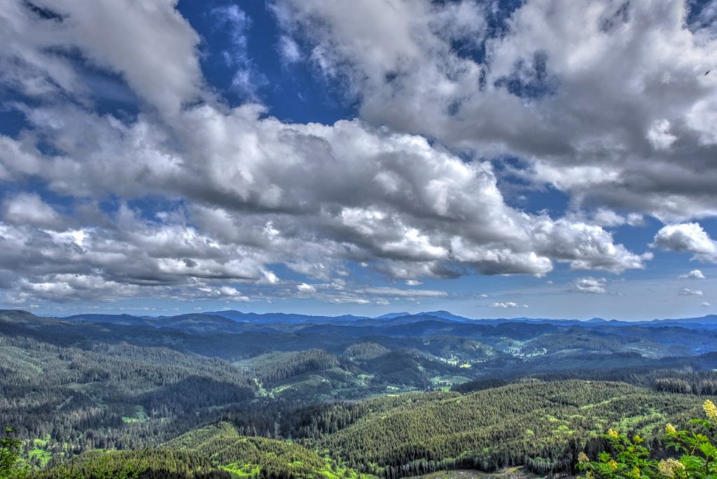 ...from atop Cape Perpetua looking toward Mary's Peak and the Willamette Valley... Ken Gagne photo