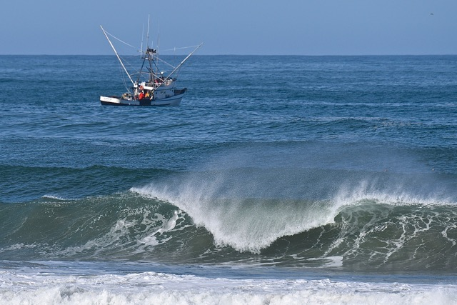 Troller close in to shore! Just following the fish! Ken Gagne photo