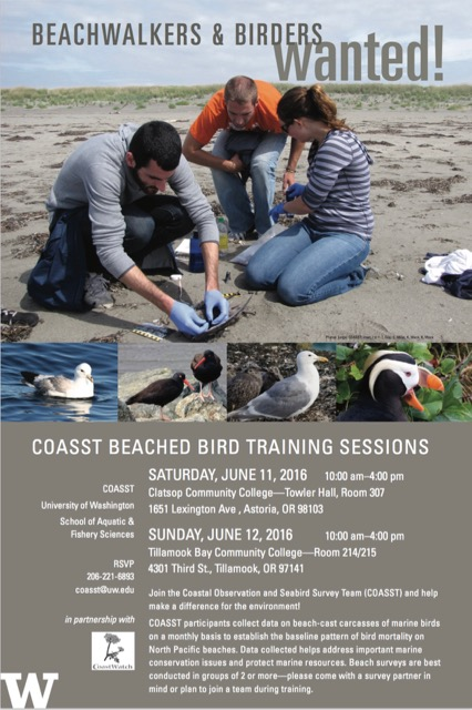 beach walkers and birders wanted posted