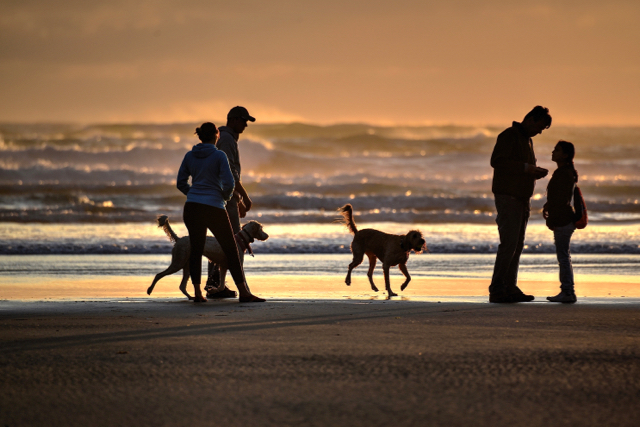 Nice, relaxed scene on a Yachats beach Tuesday evening... Ken Gagne