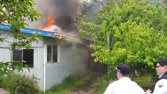 Fire spread from a grease fire in the kitchen.  Consuming entire home.