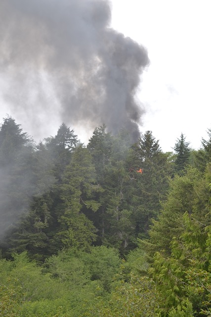At height of the fire, neighbors feared the blaze may jump the canyon toward them. Jim Fitzgerald photo