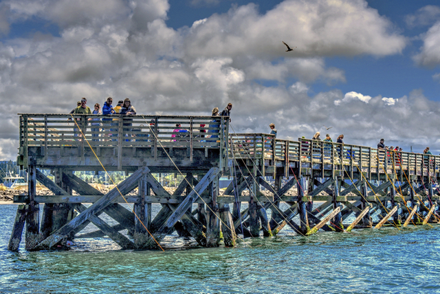 Crabbing off So. Beach Dock Ken Gagne