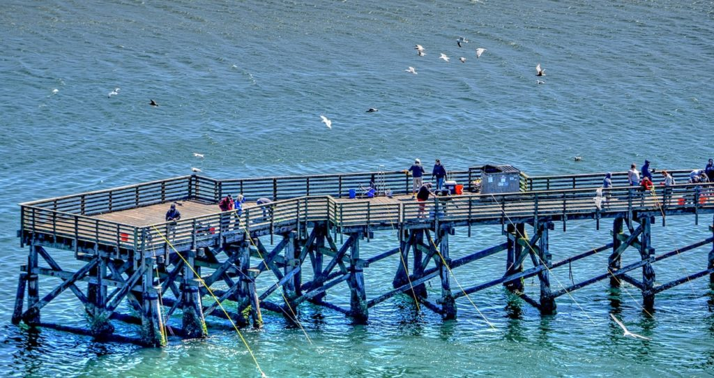 Life is good on the fishing dock at the south end of the Yaquina Bay Bridge.