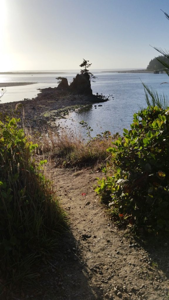 Pathway to a lovely vista. Siletz Bay Pauline Morrison