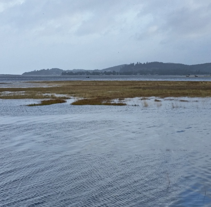 Siletz Bay with storm surge.  Saturday will be the big test... Pauline Morrison