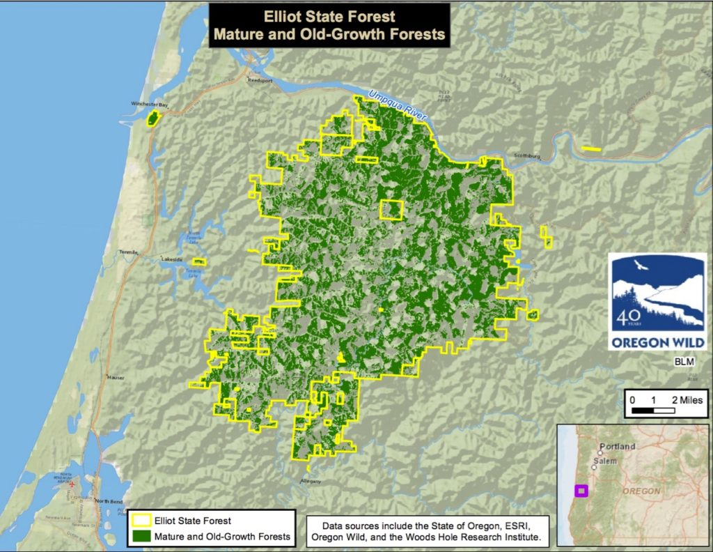 Elliot State Forest On the sales block Oregonian graphic