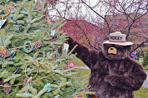 Smokey Bear invites families to hunt down their perfect Christmas Tree! USFS photo