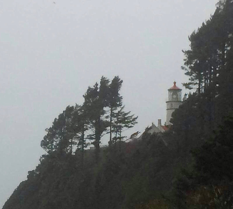 Off, then on, then off again.  Power problems at the Heceta Head Lighthouse south of Yachats Sara Vandehey photo