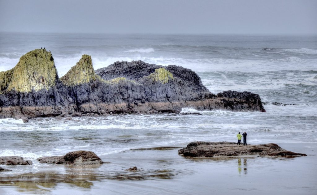 Seal Rock  Ken Gagne photo