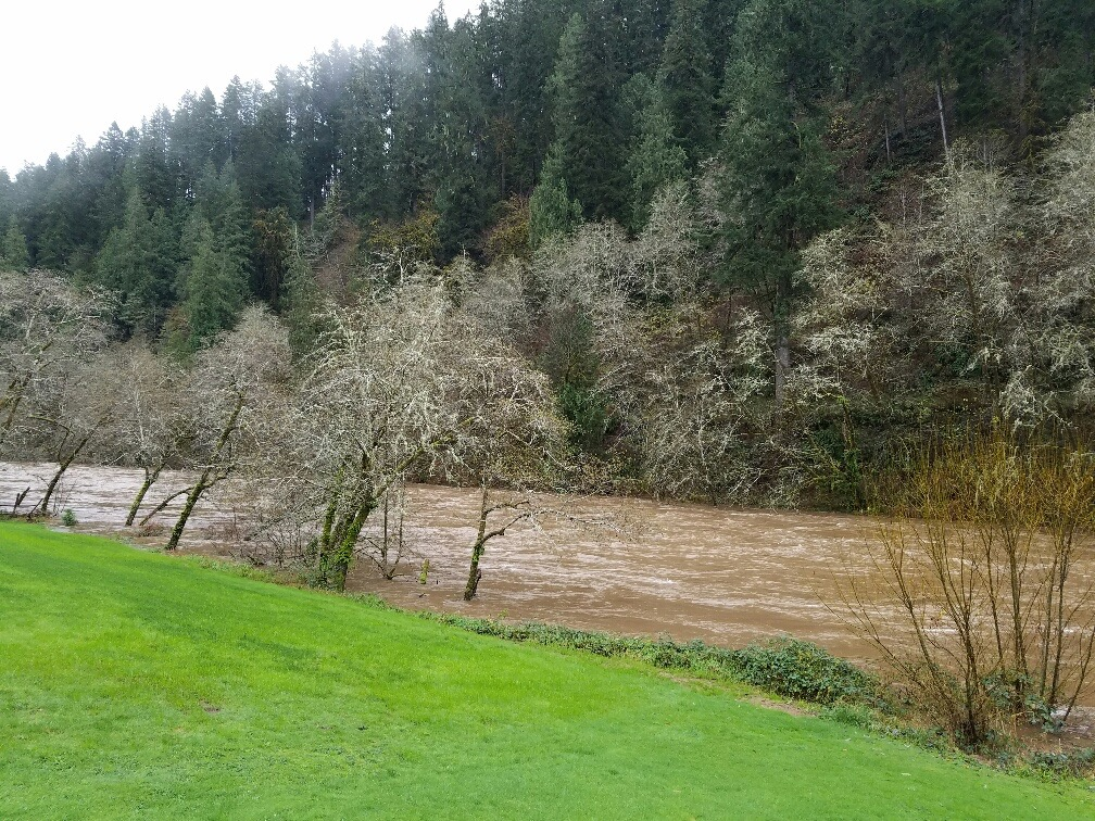 Tidewater area up the Alsea River Isolliday photo