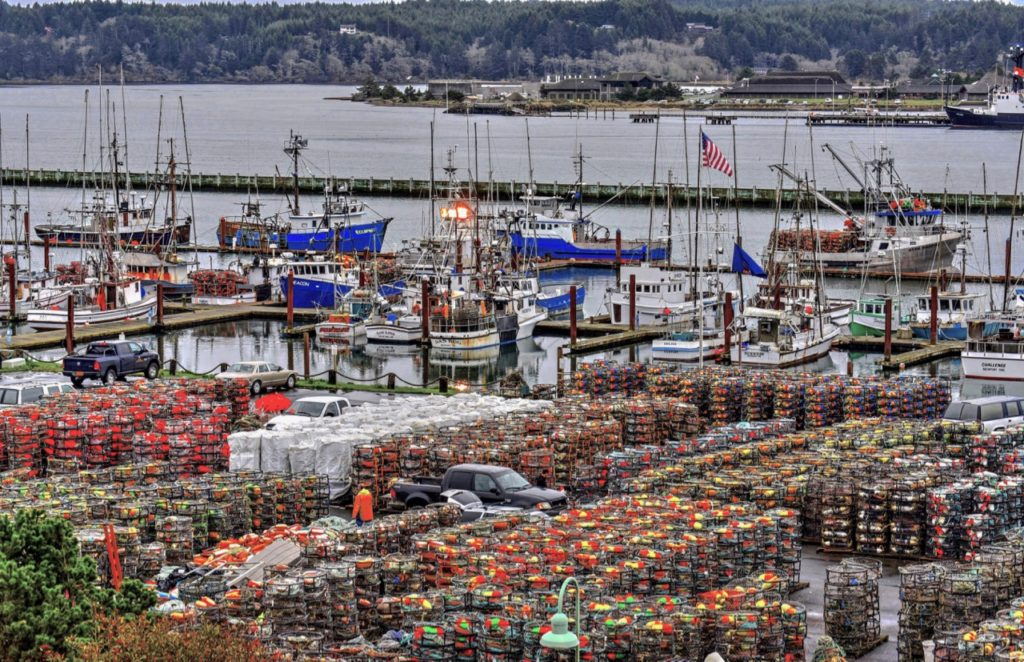 Not a pretty sight...crab pots stacked up and nowhere to go!